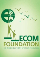 ECOM Foundation
